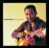 Muddy Waters - The Anthology 1947-1972  artwork