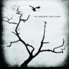 Sometime Around Midnight - The Airborne Toxic Event