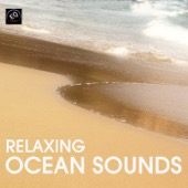 Ocean Sounds Collection - Ocean Sounds - Relaxing Ocean Sounds for Sleep - Soothing Ocean Waves for Relaxation Meditation, Sleep, Yoga, Spa and Massage Therapy. Healing Sounds of Nature  artwork