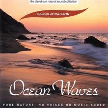 The David Sun Natural Sound Collection: Sounds of the Earth - Ocean Waves, Sounds of the Earth