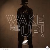 Avicii - Wake Me Up artwork