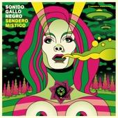 Sonido Gallo Negro - Alfonso Graña (Selvatica) artwork