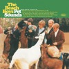pochette album Pet Sounds