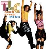 TLC - Now & Forever: The Hits  artwork