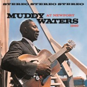 Muddy Waters - Muddy Waters At Newport 1960 (Live)  artwork