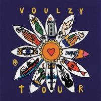 Laurent Voulzy - Voulzy Tour (Live Zénith 1993)
