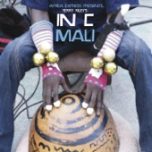 Andre de Ridder & Africa Express - Africa Express Presents... Terry Riley's In C Mali  artwork