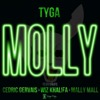 Molly (Edited Version) [feat. Wiz Khalifa, Mally Mall & Cedric Gervais] - Single