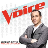 joshua-davis-fields-of-gold-the-voice-performance