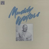 Muddy Waters - The Chess Box  artwork