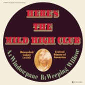 Mild High Club - Live in Concert