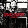 10) David Guetta - What I Did For Love (feat. Emeli Sandé)