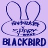 BLACKBIRD (LIVE at 2014.10.15 J-WAVE) - Single