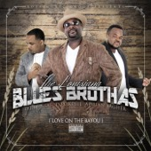 The Louisiana Blues Brothas - Love On the Bayou  artwork