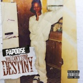 Papoose - You Can't Stop Destiny  artwork