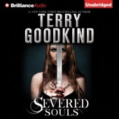 Terry Goodkind - Severed Souls: Sword of Truth, Book 14 (Unabridged)  artwork