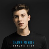 Handwritten - Shawn Mendes Cover Art