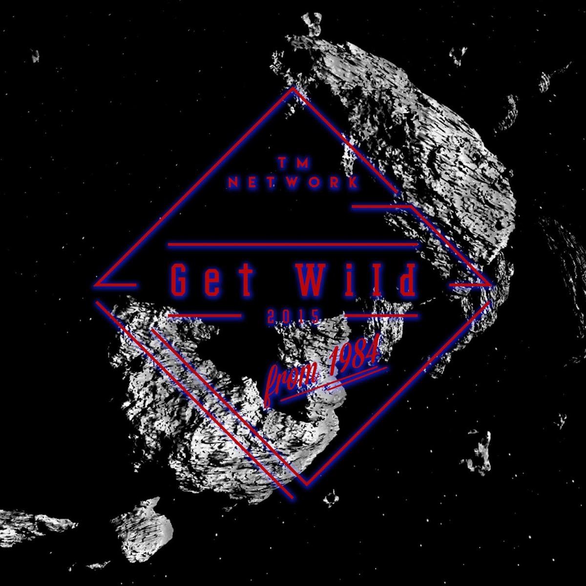 TM Network* TMN - Wild Heaven