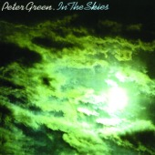 Peter Green - In the Skies  artwork