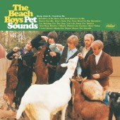 The Beach Boys - Pet Sounds (Mono & Stereo)  artwork