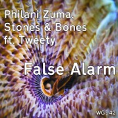 False Alarm (feat. Tweety)