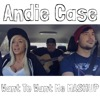 Andie Case - Want To Want Me / I Want You To Want Me Mashup