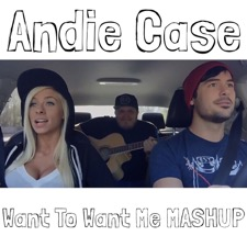 Want To Want Me / I Want You To Want Me Mashup by Andie Case