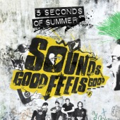 5 Seconds of Summer - Sounds Good Feels Good  artwork
