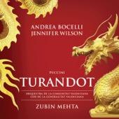 Zubin Mehta, Andrea Bocelli, Orquestra de la Comunitat Valenciana & Jennifer Wilson - Puccini: Turandot  artwork