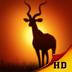 Deer Hunter: African Safari for iPad