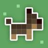 Dashy Dog