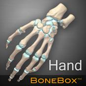 手骨医学教学软件 BoneBox™ – Hand