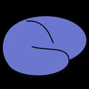 MRIcro