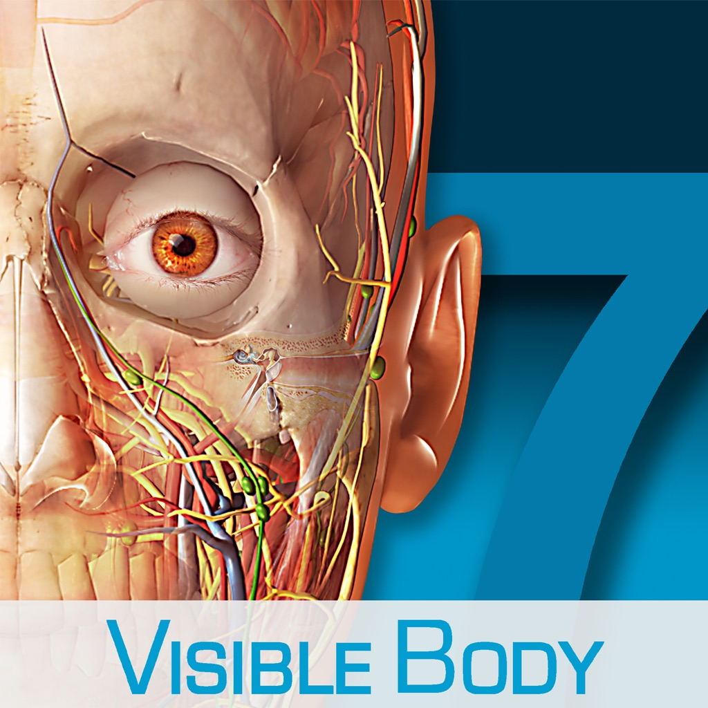 Human Anatomy Atlas – 3D Anatomical Model of the Human Body App ...