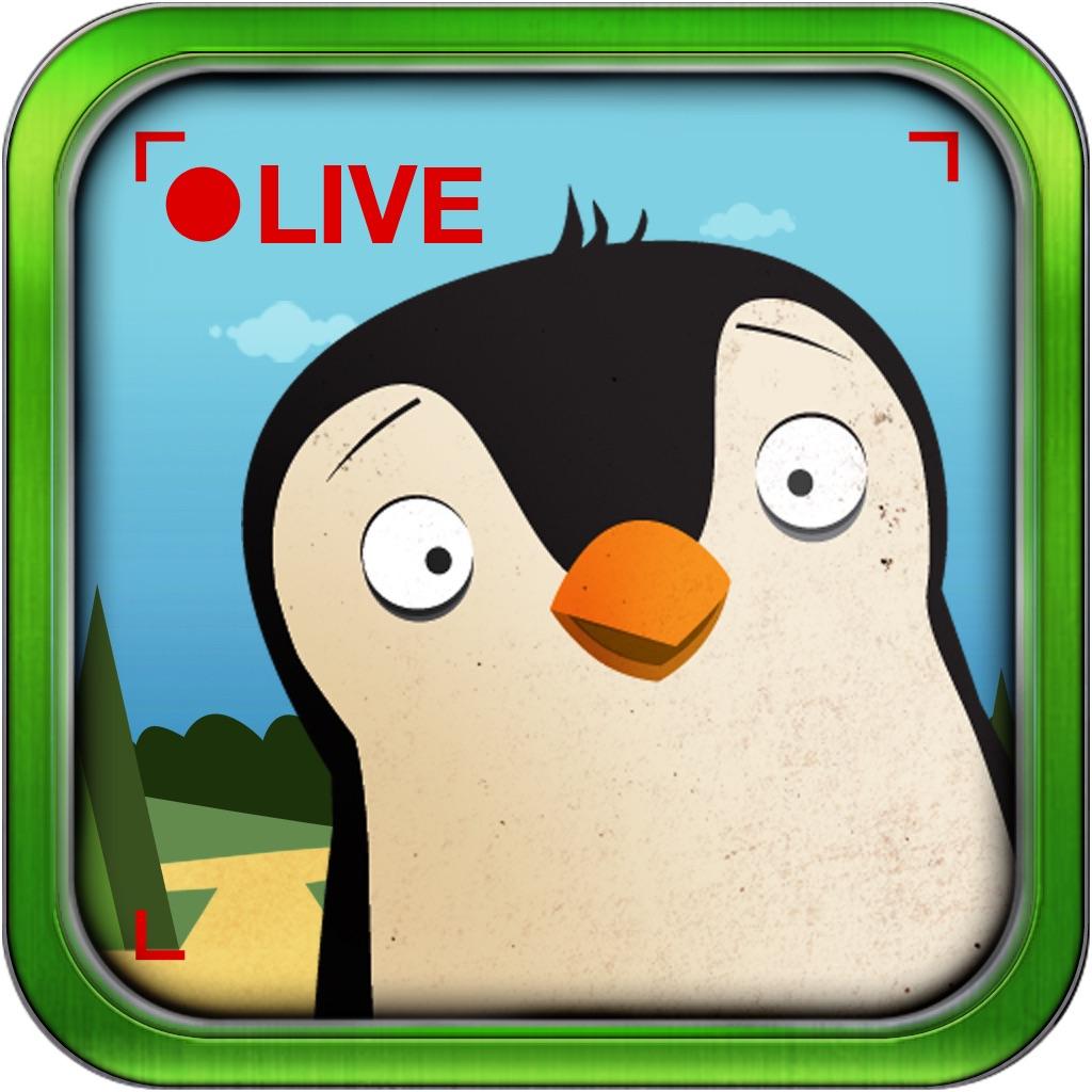 口袋动物园:Pocket Zoo with Live Animal Cams