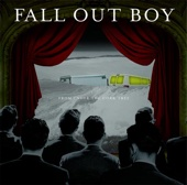 From Under the Cork Tree cover art