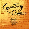 Mr Jones- Counting Crows mp3