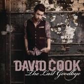 The Last Goodbye - Single cover art