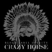 Crazy Horse - Single cover art