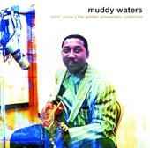 Rollin' Stone - Muddy Waters