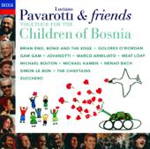 Ouça online e Baixe GRÁTIS [Download]: Miss Sarajevo MP3