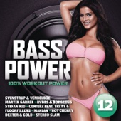 Bass Power 12