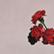 All of Me - John Legend lyrics