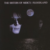 Lucretia My Reflection - The Sisters of Mercy