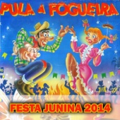 Festa Junina 2014 (Pula a Fogueira) - Various Artists