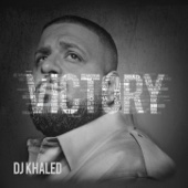 DJ Khaled - Fed Up (feat. Lil Wayne, Usher, Drake, Young Jeezy & Rick Ross) artwork