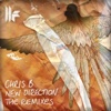 New Direction - The Remixes - EP