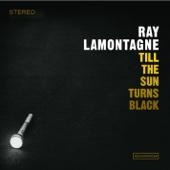Till the Sun Turns Black