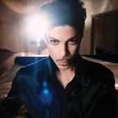Prince - Extraloveable kunstwerk