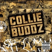 Blind to You - Collie Buddz Cover Art